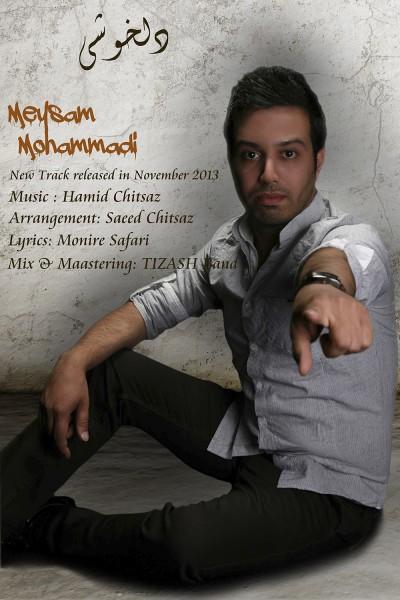 دانلود آهنگ جدید و فوق العاده زیبای میثم محمدی به نام دلخوشی