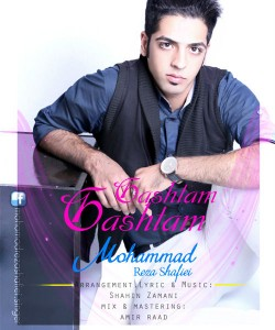 دانلود آهنگ جدید محمدرضا شفیعی به نام گشتم گشتم