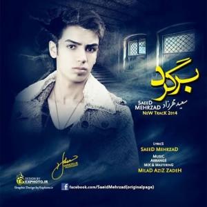 دانلود آهنگ جدید سعید مهرزاد برگرد