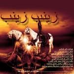 دانلود آهنگ جدید علی فولادی به نام زنب زینب
