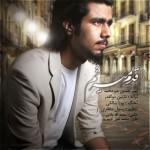 دانلود آهنگ جدید امیر حسین میرمحمد به نام قدم میزنم