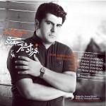 دانلود آهنگ جدید فرزاد شیرمحمدی به نام تنهایی بدتر