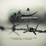 دانلود آهنگ جدید محمد بابایی به نام شرط عبور