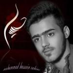 دانلود آهنگ جدید محمد حسین رحیمی به نام حسین