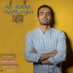 دانلود آهنگ جدید علی جوکار به نام یه عکس دوتایی
