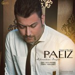 دانلود آهنگ جدید محمدرضا درگاهی به نام پاییز