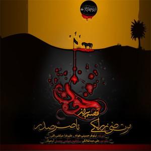 دانلود آهنگ جدید ناصر صدر و مرتضی زرلکی قصه ی پر از خون