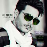دانلود آهنگ جدید بهمن نجاتی به نام دل میبری