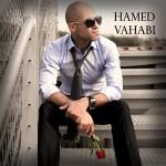 دانلود آهنگ جدید حامد وهابی به نام دارم میرم