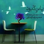 دانلود آهنگ جدید حمید رضا رضایی به نام یاس کبود