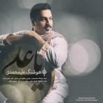 دانلود آهنگ جدید هوشنگ علی محمدی به نام یا علی