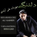 دانلود آهنگ جدید مهرداد علی آبادی و علی کاشفی به نام دلتنگی