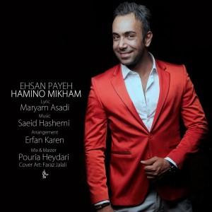 دانلود آهنگ جدید احسان پایه همینو میخوام