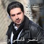 دانلود آهنگ جدید ناصر قاسمیوند به نام منتظران