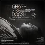 دانلود آهنگ جدید محمد رضا مقدم به نام گریه زیر دوش