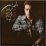 دانلود آهنگ جدید مجتبی شاه علی به نام دل من