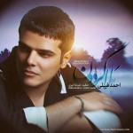 دانلود آهنگ جدید احمد فیلی به نام بلا گردون