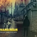 دانلود آهنگ جدید ماهان عابدی و مهرشید حبیبی و علی سلیمی به نام نامحرم