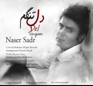 دانلود آهنگ جدید ناصر صدر دلتنگم