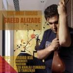 دانلود آهنگ جدید سعید علیزاده به نام یک ذره احساس