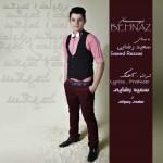 دانلود آهنگ جدید سعید رضایی به نام بهناز