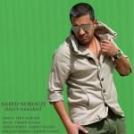 دانلود آهنگ جدید سعید نوروزی به نام دلت نسوخت