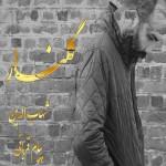 دانلود آهنگ جدید شهاب الدین به نام گلنار