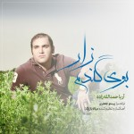 دانلود آهنگ جدید آریا حمد الله زاده به نام بوی گندم زار