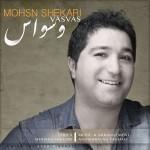دانلود آهنگ جدید محسن شکاری به نام وسواس
