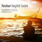 دانلود آهنگ جدید یاشار نقیب سادات به نام برو