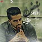 دانلود آهنگ جدید محمد رضا شفیعی به نام بغض