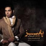 دانلود آهنگ جدید علی سوهانی به نام پاییز