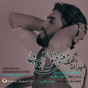 دانلود آهنگ جدید مهران باقری معنی عشقو نفهمیدی