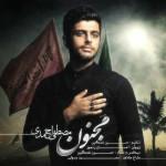 دانلود آهنگ جدید مصطفی احمدی به نام مجنون