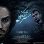 دانلود آهنگ جدید احمد سلو و مهرشید حبیبی به نام مشترک مورد نظر