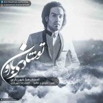 دانلود آهنگ جدید احمد رضا شهریاری به نام تو شادی با اون