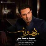 دانلود آهنگ جدید سعید محمد نبی به نام بهونه