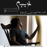 دانلود آهنگ جدید احمد سلو به نام غریبه