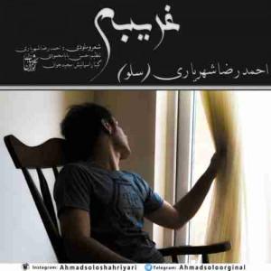 دانلود آهنگ جدید احمد سلو غریبم