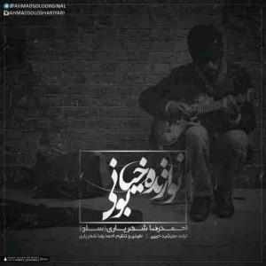 دانلود آهنگ جدید احمد سلو نوازنده خیابونی