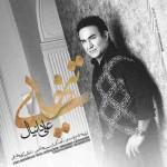 دانلود آهنگ جدید علی دانیال به نام تنهایی