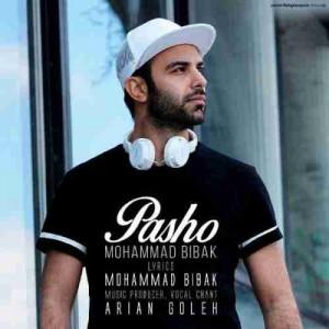 دانلود آهنگ جدید محمد بیباک پاشو