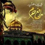 دانلود آهنگ جدید محمد رضا عشریه به نام مدافع حرم