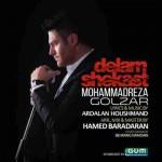 دانلود آهنگ جدید محمد رضا گلزار به نام دلم شکست