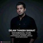 دانلود آهنگ جدید محمد علی وزیری به نام دلم تنگه برات