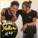 دانلود آهنگ جدید زرد یواش به نام جدی