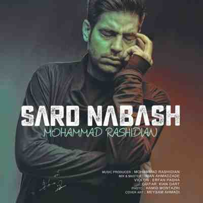 عکس کاور آهنگ جدید محمد رشیدیان  به نام سرد نباش عکس جدید محمد رشیدیان