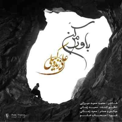 متن آهنگ باورم کن از علی زند وکیلی