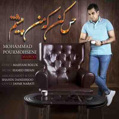 عکس کاور آهنگ جدید محمد پورمحسنی به نام  حس کن که من پیشتم عکس جدید محمد پورمحسنی