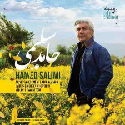 عکس کاور آهنگ جدید حامد سلیمی به نام  دل دیوونه عکس جدید حامد سلیمی